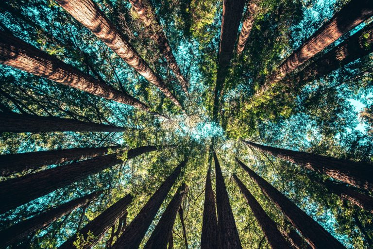 ESG in property and moving with the sustainability tide